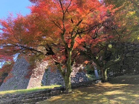 人吉城跡の紅葉|人吉しごとサポートセンターHit-Biz